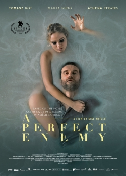 watch-A Perfect Enemy