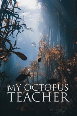 watch-My Octopus Teacher
