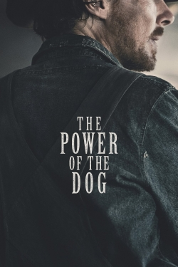 watch-The Power of the Dog